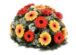Květiny na položení.jpg